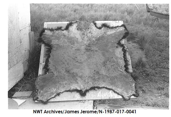 N-1987-017: 0041
