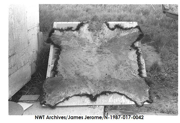 N-1987-017: 0042